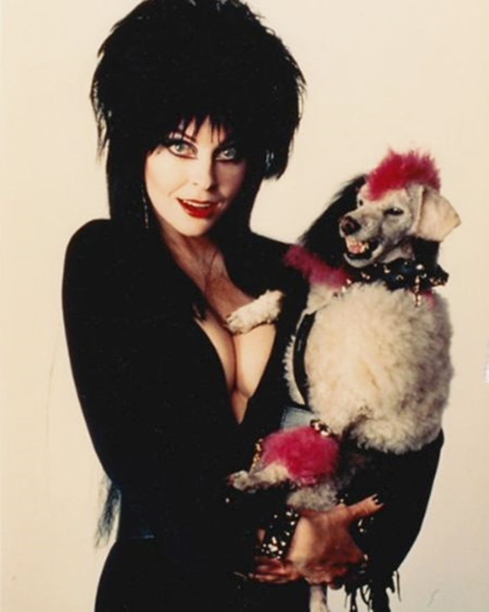 """Elvira e seu """"pet punk"""", em Elvira, Mistress of the Dark (1988). (Foto: Reprodução)"""