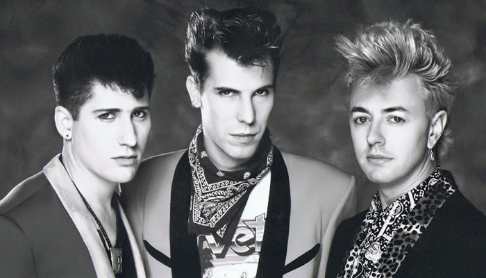 Banda Stray Cats